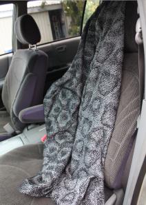 New_car_blanket